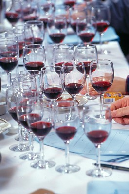 dallas morning news wine competition winners 2010