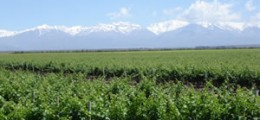 mendoza top 50 places of a lifetime, worlds greatest places, national geographic traveler